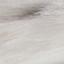 Vorderseite:  Weiß, Hellbraun, Braun Rückseite: Elfenbein