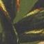 Donkergroen, multicolour