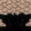Czarny, beżowy, taupe