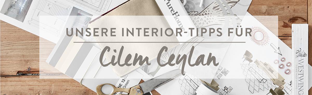 LP_Cilem_Ceylan_Desktop