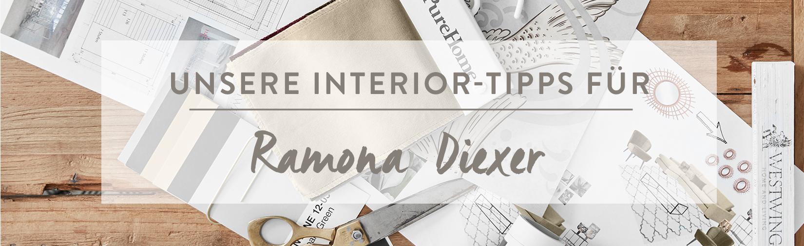 Ramona_Diexer_Desktop