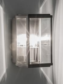 Zewnętrzny kinkiet ze szklanym kloszem Wally, Stal szlachetna, S 16 x W 25 cm