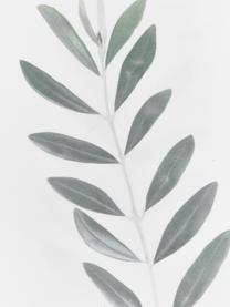Federa arredo con rame di ulivo Botanical, Poliestere, Bianco, verde, Larg. 40 x Lung. 40 cm