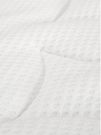 Letto boxspring in velluto premium Lacey, Materasso: a molle insacchettate a 7, Piedini: legno massello di faggio,, Grigio chiaro, 200 x 200 cm