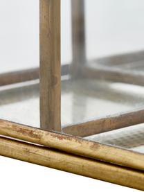Organizer Sorted, Szkło, metal, Mosiądz, S 15 x W 9 cm