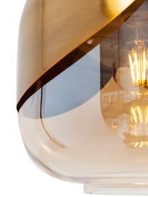 Lampada a sospensione in vetro Golden Goblet, Paralume: vetro colorato, Ottone, Ø 25