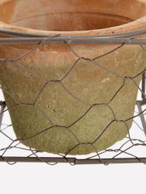 Plantenpottenset Daria, 4-delig , Metaal, terracotta, Terracottarood, zwart, 37 x 9 cm