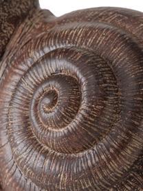 Oggetto decorativo Broca, Materiale sintetico, Marrone, Larg. 14 x Alt. 27 cm