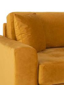 Sofa z aksamitu Andrew (3-osobowa), Tapicerka: aksamit poliestrowy 3000, Nogi: drewno jodłowe, Musztardowy, S 210 x G 93 cm