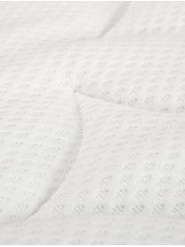 Łóżko kontynentalne z aksamitu premium Lacey, Nogi: lite drewno bukowe, lakie, Jasny szary, 200 x 200 cm