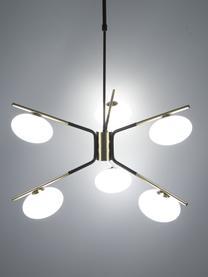 Lampada a sospensione di design Guna, Struttura: metallo ottonato, Nero opaco  Struttura: ottonato opaco, Ø 70 cm