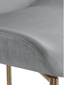 Sedia imbottita in velluto grigioTess, Rivestimento: velluto (poliestere) Con , Gambe: metallo verniciato a polv, Velluto grigio Gambe: oro, Larg. 49 x Alt. 64 cm