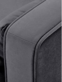 Divano a 2 posti in velluto grigio scuro Alva, Rivestimento: velluto (copertura in pol, Struttura: legno di pino massiccio, Piedini: legno massello di faggio,, Grigio scuro, Larg. 184 x Prof. 94 cm