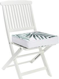 Hohes Sitzkissen Coast, Bezug: 100% Baumwolle, Grün, 40 x 40 cm