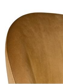 Samt-Polsterstuhl Barbara, Bezug: 100% Polyestersamt, Beine: Buchenholz, lackiert, Bezug: Gelb Beine: Walnussbraun, 51 x 85 cm
