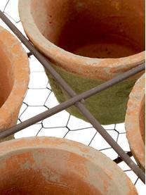 Set portavasi in terracotta Daria 5 pz, Portavasi: terracotta, Terracotta, marrone, Larg. 24 x Alt. 10 cm
