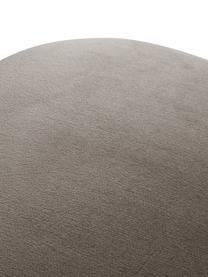 Samt-Polsterstuhl Rachel in Taupe, Bezug: Samt (Polyester) Der hoch, Beine: Metall, pulverbeschichtet, Samt Taupe, B 53 x T 57 cm