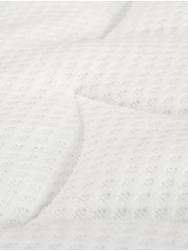 Premium Samt-Boxspringbett Lacey, Matratze: 7-Zonen-Taschenfederkern , Füße: Massives Buchenholz, lack, Hellgrau, 200 x 200 cm