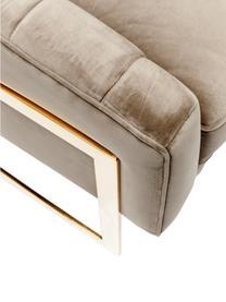 Fotel z aksamitu Pure Elegance, Tapicerka: poliester (aksamit), Stelaż: stal szlachetna , chromow, Korpus: drewno sosnowe, lite drew, Greige, S 77 x G 70 cm