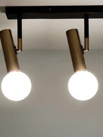 Plafoniera a LED Wilson, Baldacchino: metallo verniciato a polv, Paralume: vetro, Baldacchino: nero, opaco. Prese: ottonato . Paralume: bianco, Larg. 65 x Alt. 31 cm