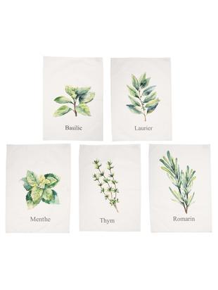 Paños de cocina Aroma, 5uds., Algodón, Blanco crudo, tonos verdes, An 50 x L 70 cm