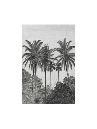 Adesivo murale Palms, Tessuto non tessuto, Grigio, nero, bianco, Larg. 200 x Alt. 300 cm