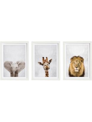 Stampa digitale incorniciata Wild Animals, set di 3, Immagine: stampa digitale su carta, Cornice: legno verniciato, Multicolore, Larg. 30 x Alt. 40 cm