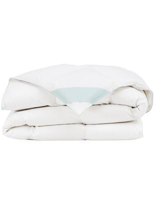 Daunen-Bettdecke Comfort, leicht, Hülle: 100% Baumwolle, feine Mak, Weiß, 240 x 220 cm