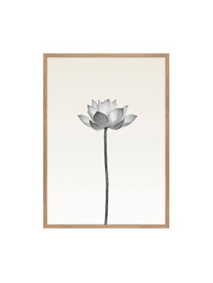 Gerahmter Digitaldruck Lotus, Bild: Digitaldruck auf Papier (, Rahmen: Hochdichte Holzfaserplatt, Schwarz, Weiss, Beige, 50 x 70 cm