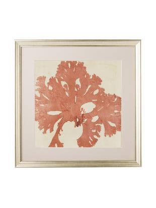 Oprawiony druk cyfrowy Mussel II, Stelaż: tworzywo sztuczne, Ilustracja: pomarańczowy, beżowy Stelaż: odcienie złotego, S 50 x W 50 cm