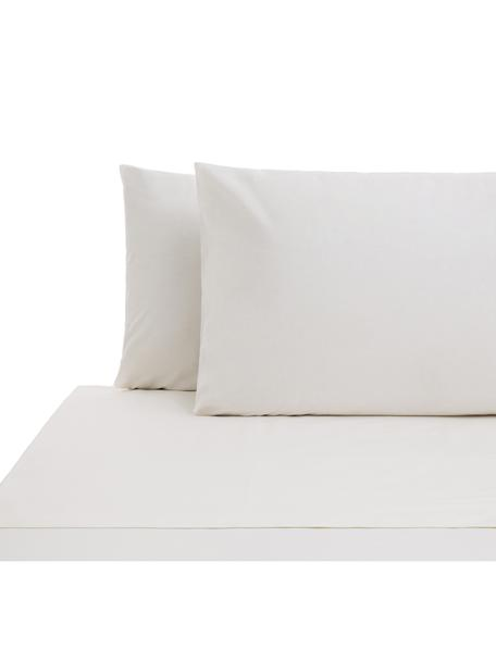 Set lenzuola in cotone ranforce Lenare, Tessuto: Renforcé, Fronte e retro: avorio chiaro, 240 x 290 cm
