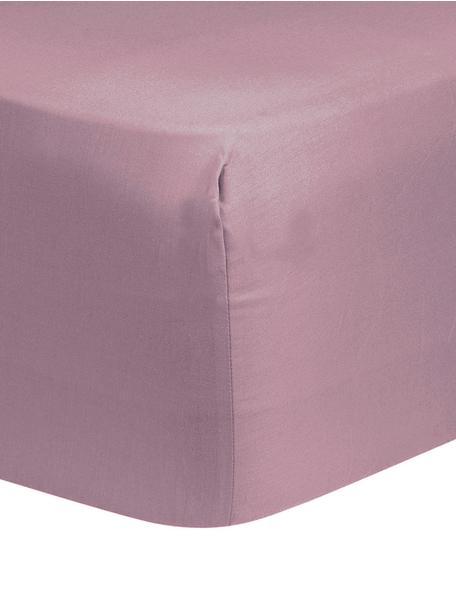 Lenzuolo con angoli in raso di cotone color malva Comfort, Malva, Larg. 90 x Lung. 200 cm