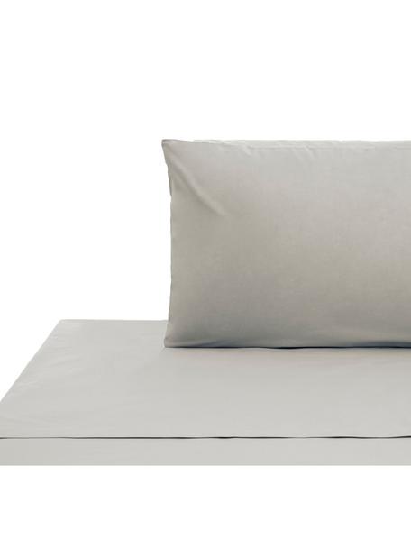 Set lenzuola in cotone ranforce Lenare, Tessuto: ranforce, Fronte e retro: grigio chiaro, 150 x 290 cm