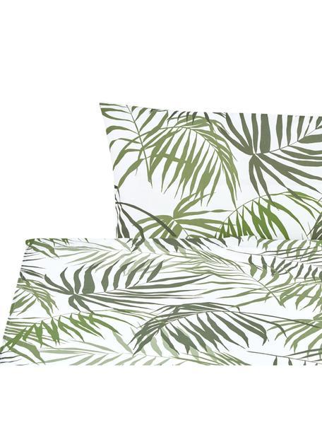Set lenzuola in cotone Dalor, Cotone, Verde, bianco, 160 x 270 cm