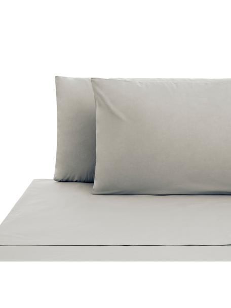 Set lenzuola in cotone ranforce Lenare, Tessuto: Renforcé, Fronte e retro: grigio chiaro, 240 x 290 cm