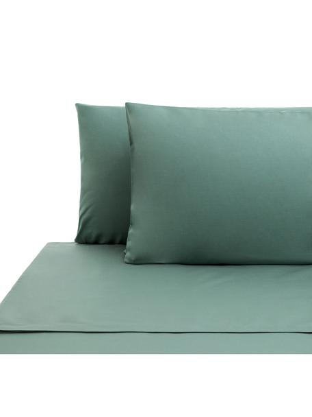Set lenzuola in cotone ranforce Lenare, Tessuto: Renforcé, Fronte e retro: verde reseda, 240 x 290 cm
