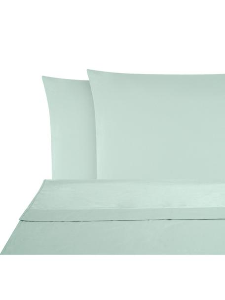Set lenzuola in raso di cotone Comfort, Tessuto: raso Densità del filo 250, Verde salvia, 240 x 300 cm