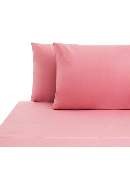 Set lenzuola in cotone ranforce Lenare, Tessuto: Renforcé, Fronte e retro: rosa, 240 x 290 cm