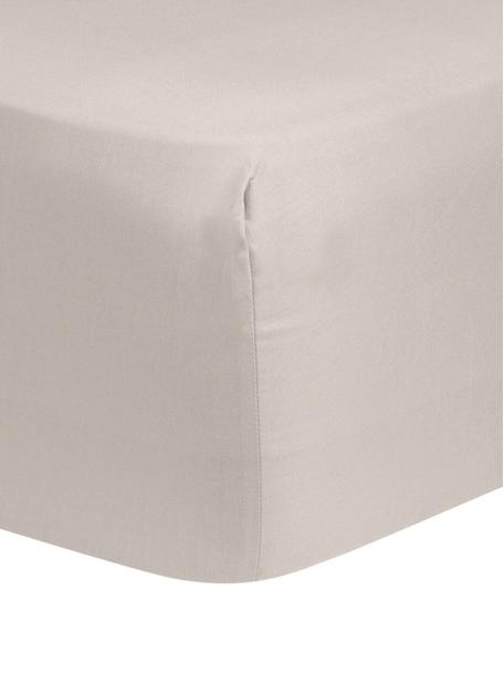 Boxspring-Spannbettlaken Comfort in Taupe, Baumwollsatin, Webart: Satin, leicht glänzend, Taupe, 90 x 200 cm
