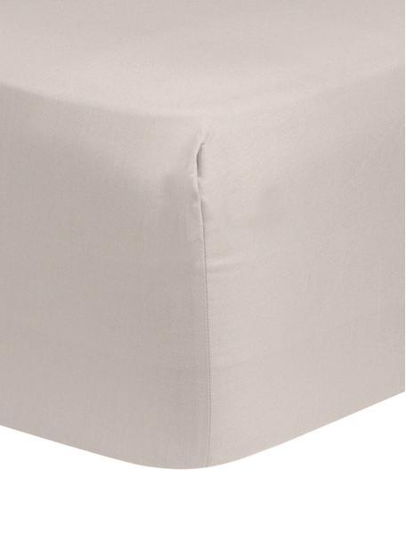 Sábana bajera para boxspring de algodón Comfort, Gris pardo, Cama 90 cm (90 x 200 cm)