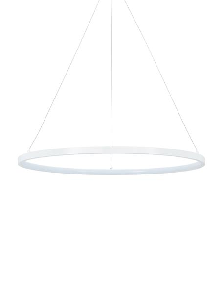 Lámpara de techo LED Jay, Anclaje: metal con pintura en polv, Pantalla: metal con pintura en polv, Cable: Teflon, Blanco mate, Ø 60 x Al 150 cm
