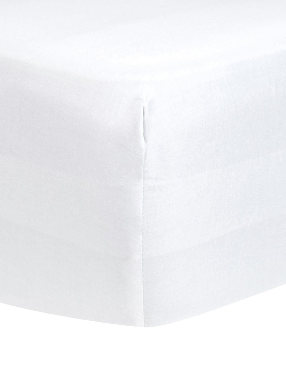 Boxspring hoeslaken Comfort in wit, katoensatijn, Weeftechniek: satijn, licht glanzend, Wit, 90 x 200 cm