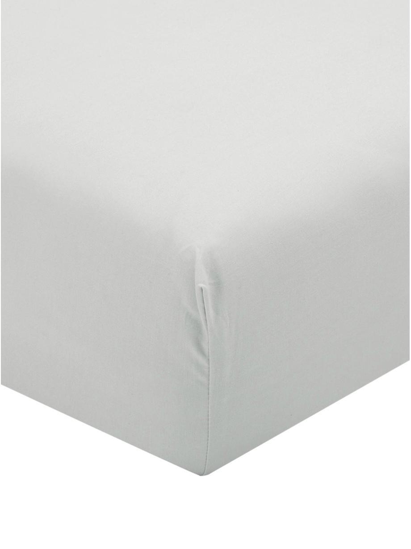Lenzuolo con angoli in percalle Elsie, Tessuto: percalle, Grigio chiaro, Larg. 90 x Lung. 200 cm