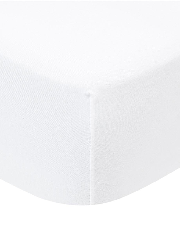 Boxspring-Spannbettlaken Lara in Weiss, Jersey-Elasthan, 95% Baumwolle, 5% Elasthan, Weiss, 90 x 200 cm