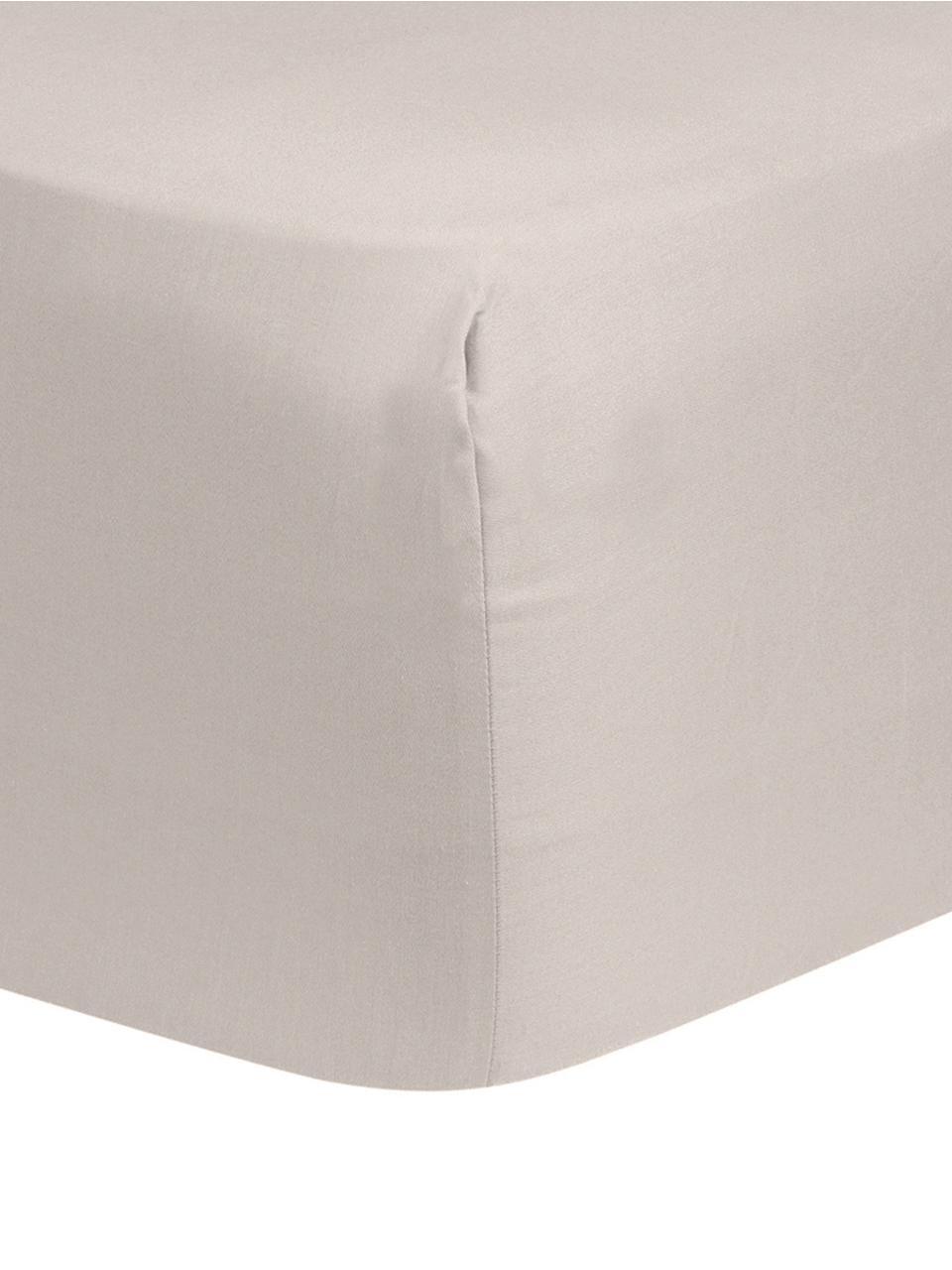 Spannbettlaken Comfort, Baumwollsatin, Webart: Satin, leicht glänzend, Taupe, 180 x 200 cm