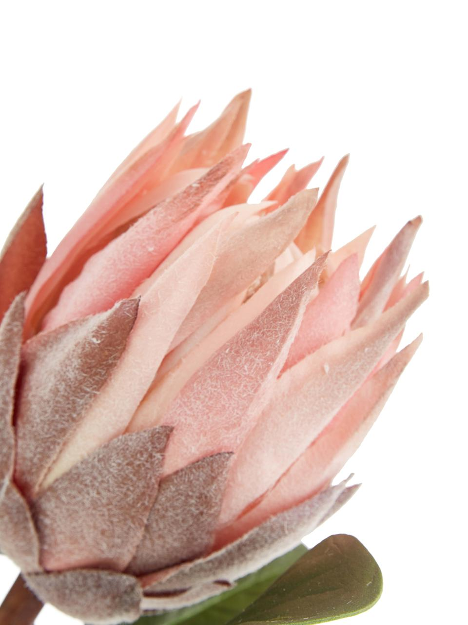 Kunstbloem Zuckerbüsche, Polyester, PCV, metaal, Groen, roze, L 60 cm