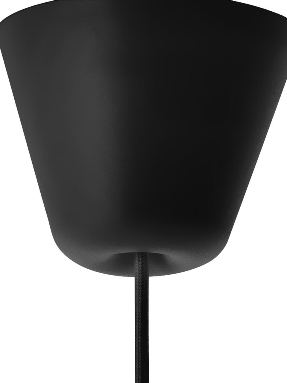 Lampada a sospensione con cinturino in pelle Strap, Paralume: metallo verniciato a polv, Baldacchino: materiale sintetico, Nero, Ø 27 x Alt. 25 cm
