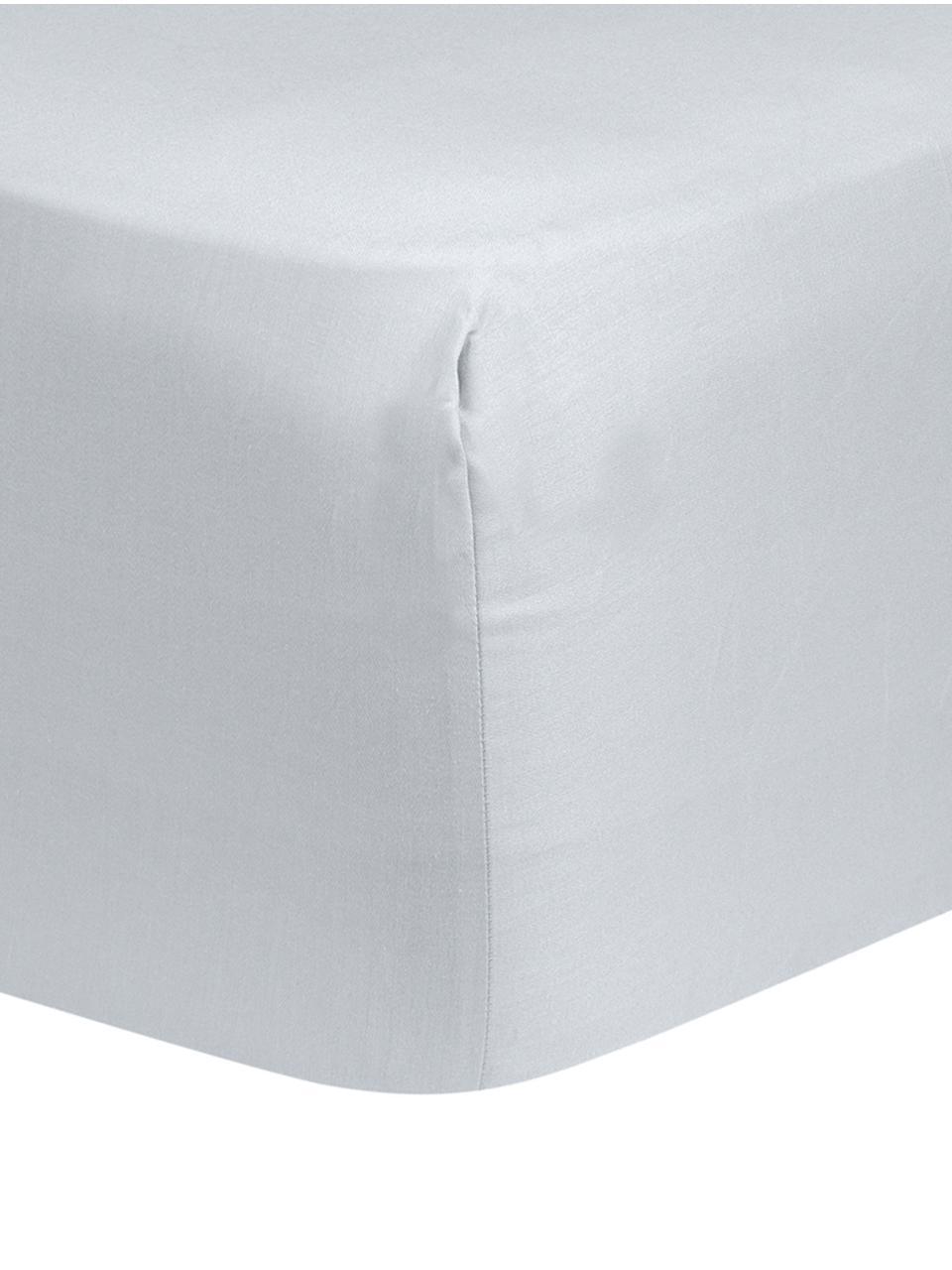 Boxspring-Spannbettlaken Comfort in Hellgrau, Baumwollsatin, Webart: Satin, leicht glänzend, Hellgrau, 200 x 200 cm