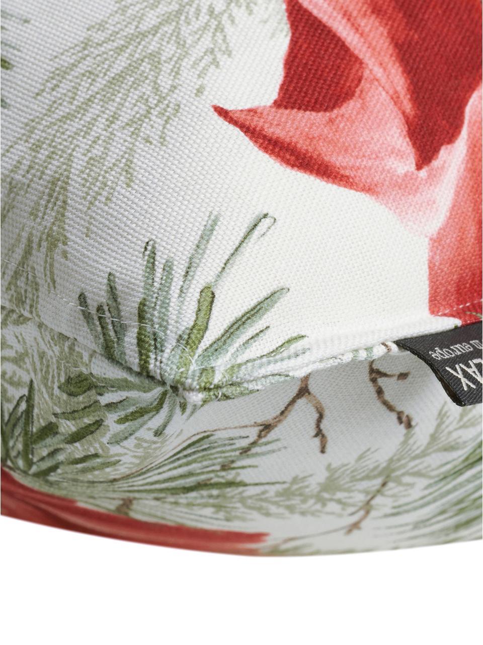 Federa arredo con motivo floreale Amara, Cotone, Bianco, rosso, verde, Larg. 50 x Lung. 50 cm