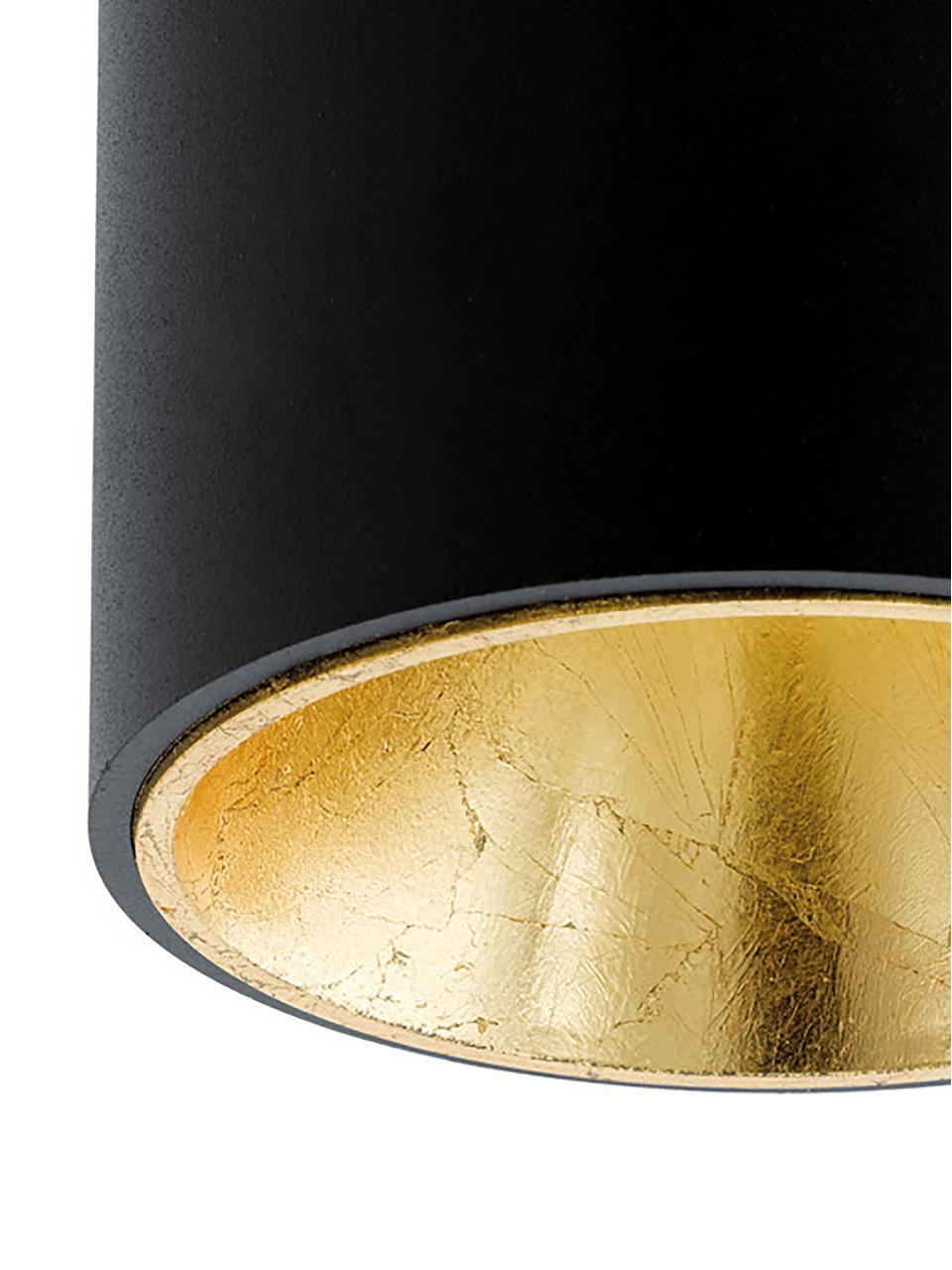 Spot LED Marty, Noir, couleur dorée